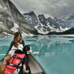 rachael-rodgers-dogs-kayak_h