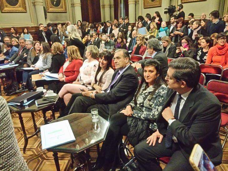 PLENARIO DE COMISIONES. La senadora Rodríguez Machado en la primera reunión en la cual se definieron los términos del tratamiento.