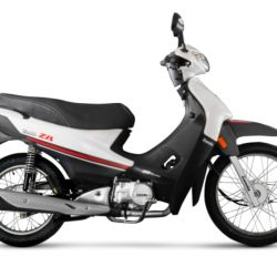 con-2963-unidades-patentadas-en-julio-zanella-zb110sigue-siendo-la-moto-mas-vendida-de-la-argentina