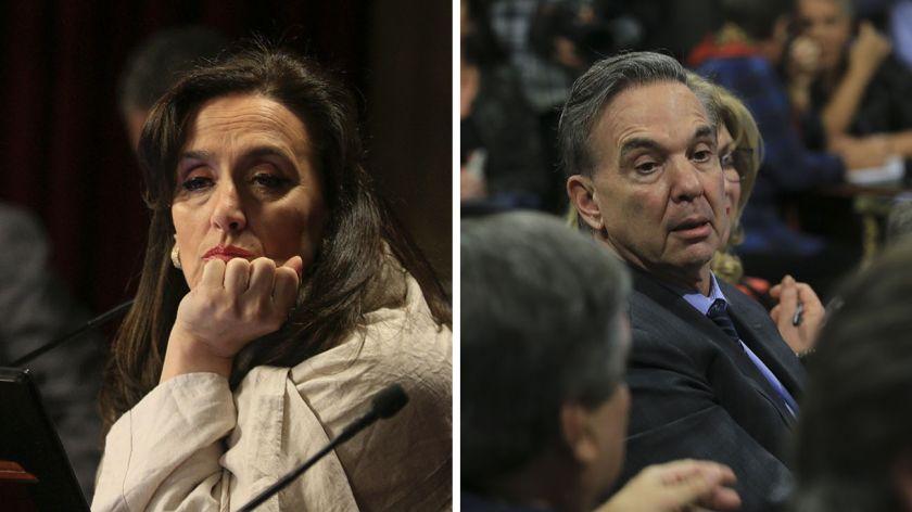 Michetti oficializó la convocatoria a la sesión — Aborto