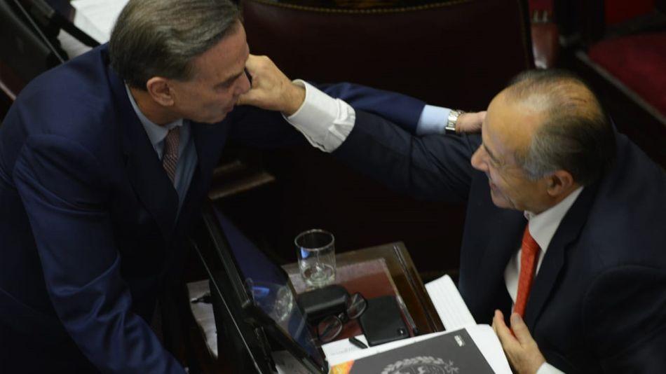 pichetto-rodriguez-saa-aborto-08-08-2018