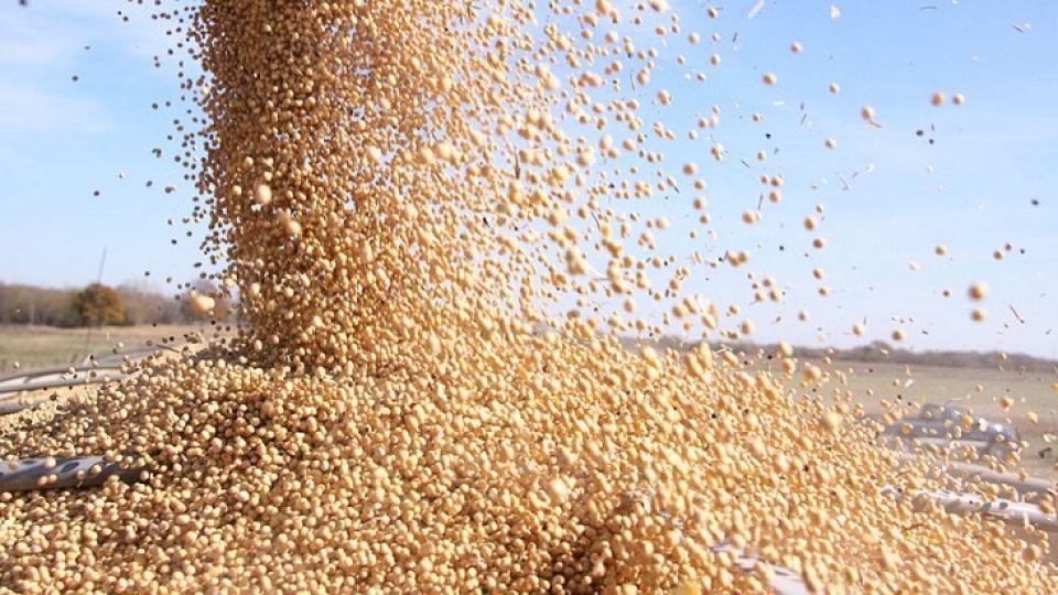 SOJA. Se suspende por 6 meses la baja de las retenciones establecida para aceites y harinas.
