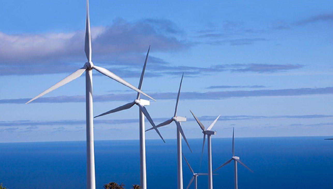 Por el cepo frenan inversión en parques eólicos en Chubut: hay 810 despedidos
