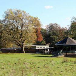 Hampstead_Heath_un_l_58597407(3)