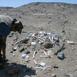 Nazca huaqueros