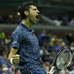Djokovic grito de campeon