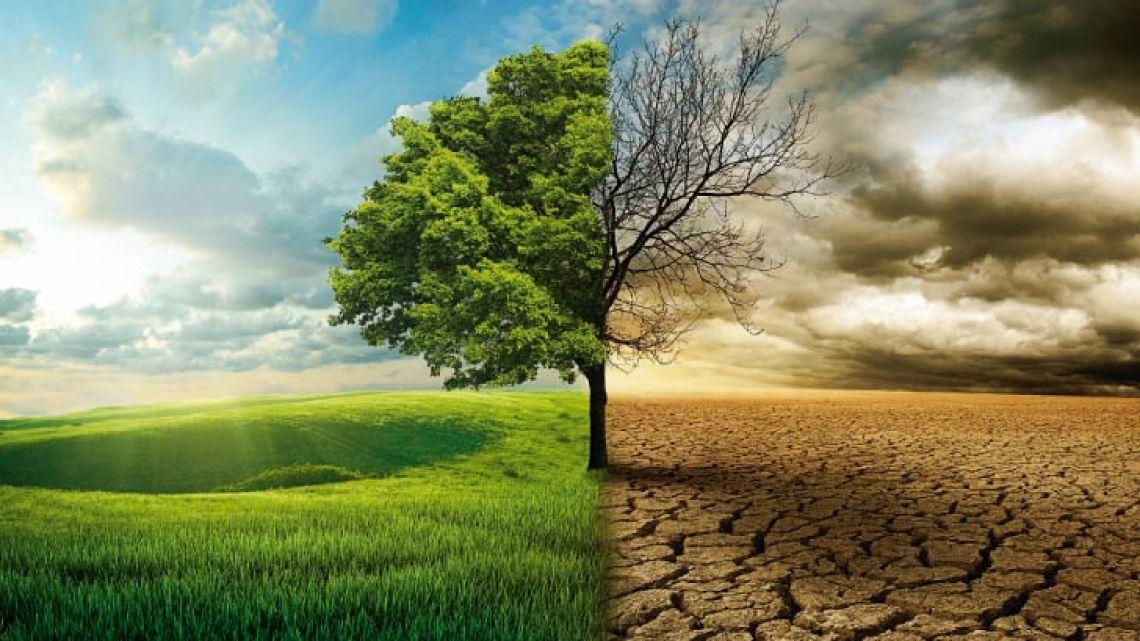 001-ecologia