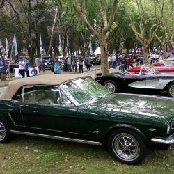 3-ford-mustang-convertible-1965-y-chevrolet-corvette-1960