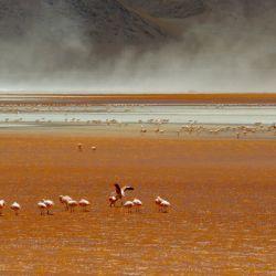 Los Andes Salvajes 2