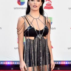 the-19th-annual-latin-grammy-awards-arrivals