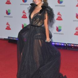 the-19th-annual-latin-grammy-awards-red-carpet