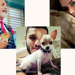 perros-influencers2