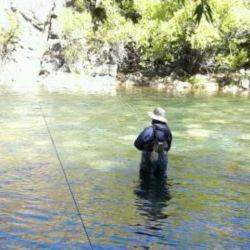 Pesca de truchas en Villa Pehuenia.