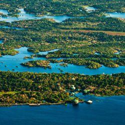 Está en el río Negro, un importante afluente del Amazonas. Se compone de siete torres interconectadas por 8 km de pasarelas entre la copa los árboles y sobre el río.