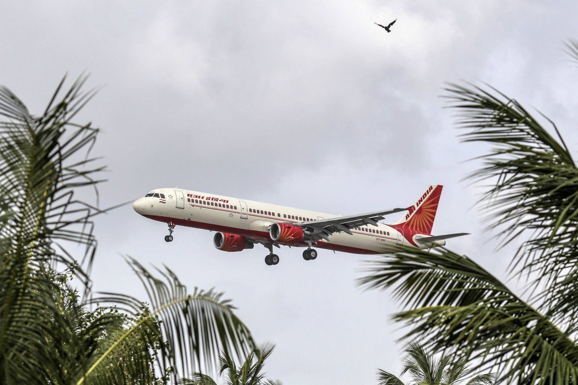 Indian Airlines Seek Emergency Credit From Oil Firms, Airports