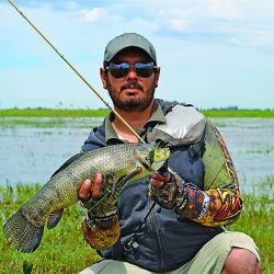 La pesca en este ámbito del corredor de Ruta 2 es muy efectiva con artificiales, porque en las zonas de desbordes el agua se calienta rápido.