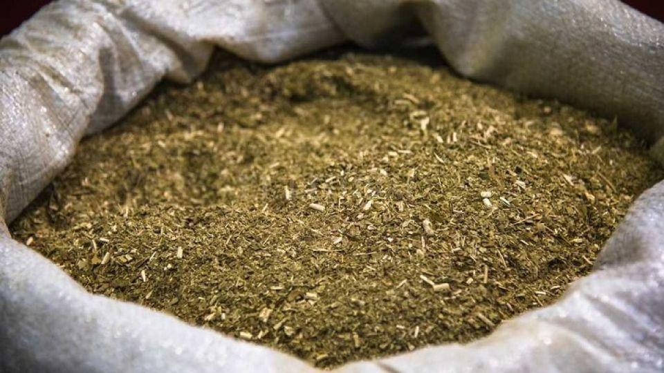 Las exportaciones de yerba mate alcanzaron un récord histórico y el consumo interno es el mejor en diez años.