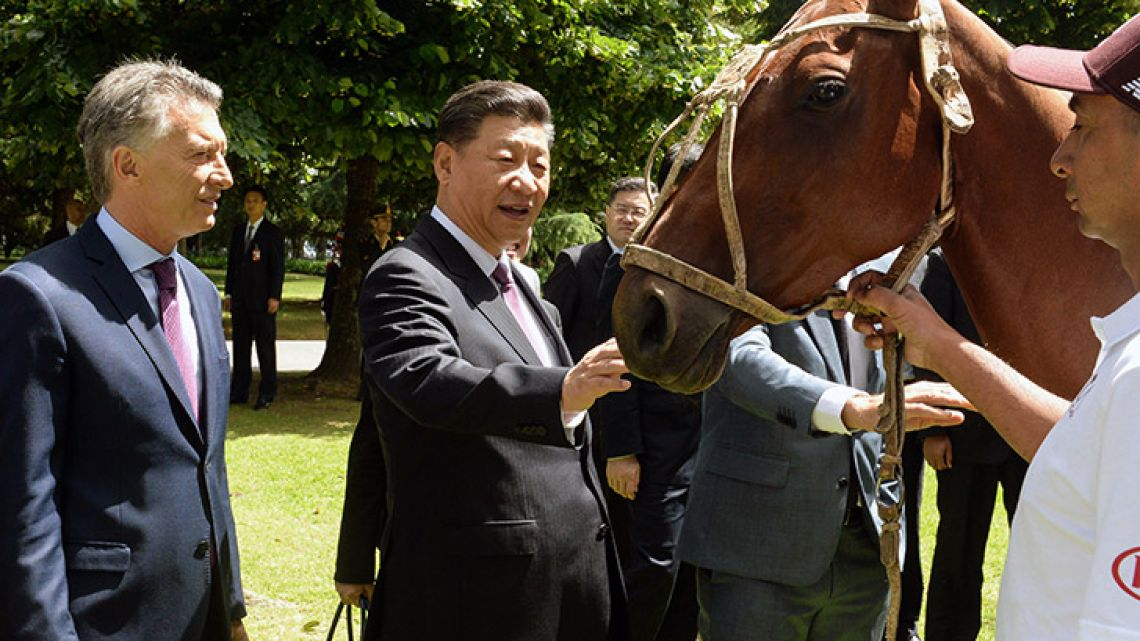 China's President Xi Jinping (centre) strokes a polo horse as President Mauricio Macri watches on, at the Olivos Presidential residence on the outskirts of the capital.