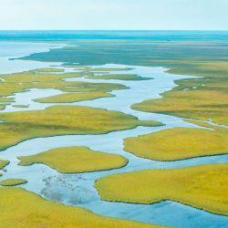 Las 159.800 hectáreas que lo componen fueron donadas por las fundaciones CLT y Flora y Fauna Argentina. Se suman a las 553.000 de esteros y humedales del contiguo Parque Provincial.