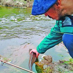Con equipos livianos disfrutamos de grandes sensaciones en las cristalinas aguas de Alpa Corral y Río Cuarto, donde las carpas también se hicieron presentes.