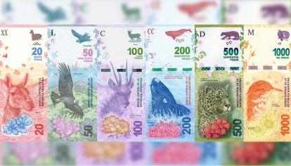 Familia de billetes Animales autóctonos de Argentina.