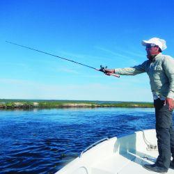 Un pequeño detalle en el cuerpo de una vara de pesca nos describe para qué ha sido diseñada. Entenderlo es fundamental para una compra acertada.