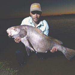 Tras esperar mucho por esta especie, finalmente dimos con ella en el partido de Lezama. Equipos, técnicas y consejos para tener éxito en esta pesca nocturna.