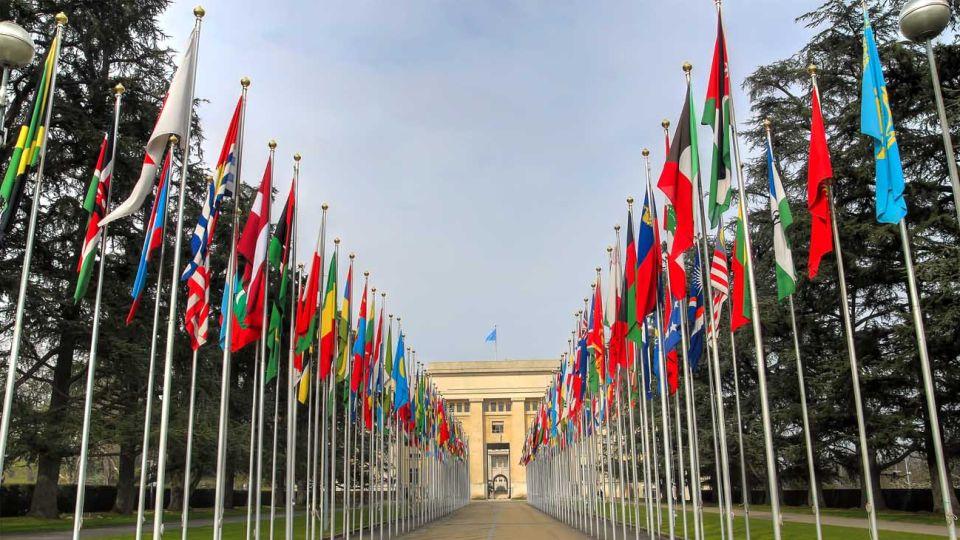 20190124 Banderas ONU