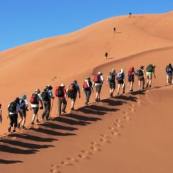 Una experiencia inolvidable: el mejor viaje a las gigantescas dunas del desierto de Namibia, en África.