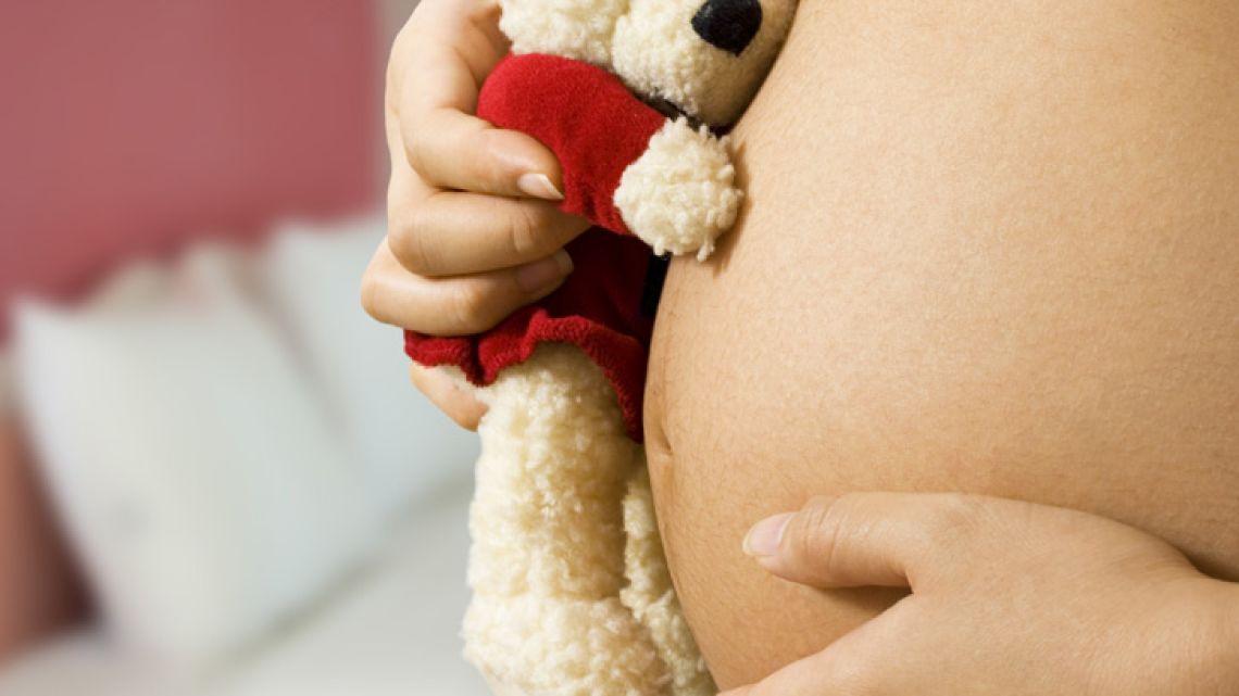 001-embarazo-oso