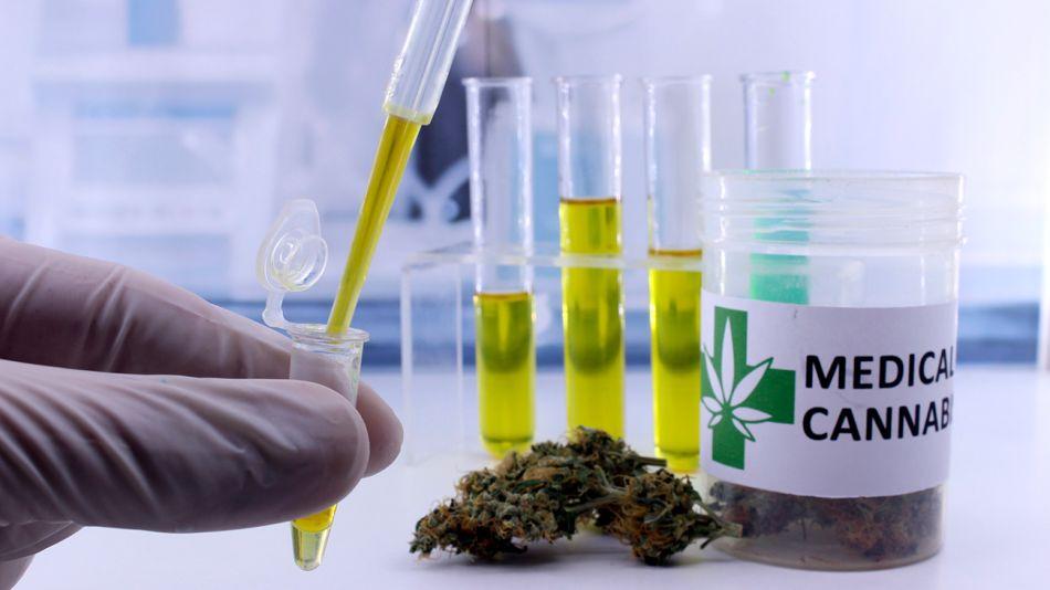 canabis-medicinal-02042019