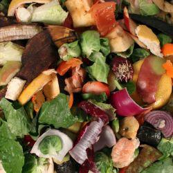 En Argentina, alrededor dede 17600 toneladas de restos de frutas y hortalizas se tiran a diario