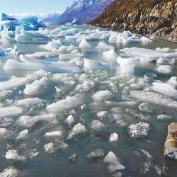 El lago Grey se llena de témpanos como traslúcidos galeones a la deriva.