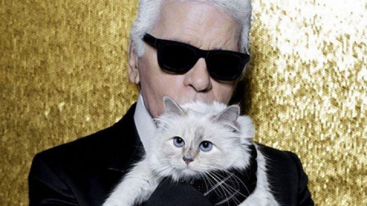 El excéntrico gato de Karl Lagerfeld heredará sus millones