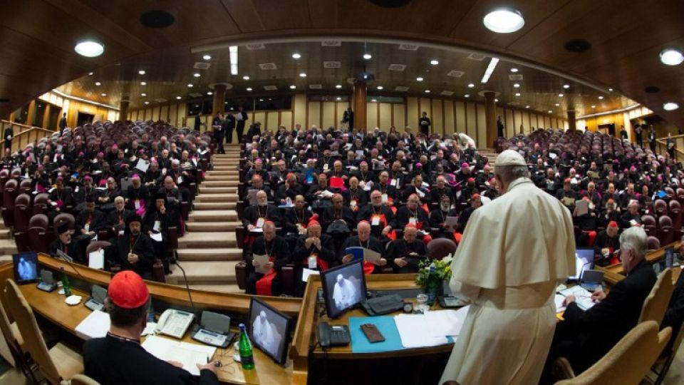 papa francisco cumbre pederastia