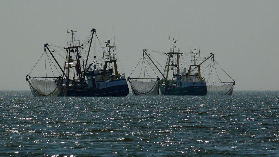 El sector pesquero genera unos 22.000 puestos de trabajo, de acuerdo al Gobierno. En 2018 se exportó pescado por 2.000 millones de dólares, 7% más que el año anterior, y el 60% de las ventas fueron de langostinos.