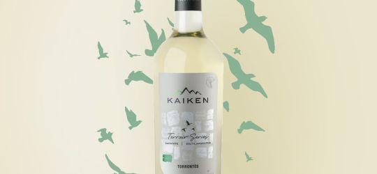 Vino blanco Terroir Series Torrontés