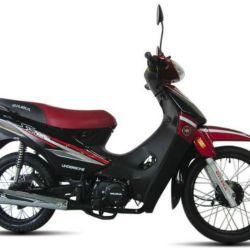 5° Gilera Smash, 1.688 unidades patentadas en febrero.