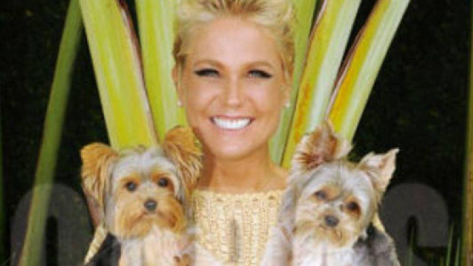 Xuxa junto a sus mascotas.