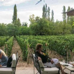Semana Santa es una época del año ideal para recorrer la ruta del vino de Mendoza.