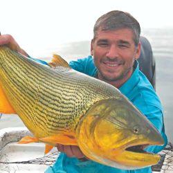 Mateo Dijou y un dorado precioso, de coloración y aletas impecables.