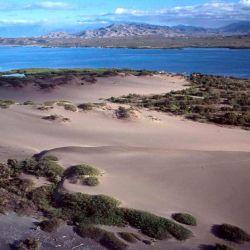 Las Dunas de Baní es un paisaje irreal con enormes dunas de arena con un ancho de hasta 15 kilómetros.