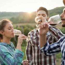 El turismo enológico está creciendo considerablemente y cada vez más personas deciden pasar un fin de semana recorriendo diferente tipos de bodegas.