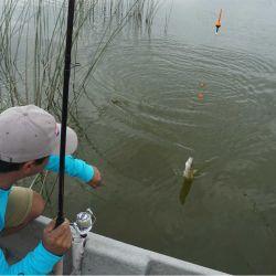 En algunas lagunas también se puede pescar de embarcado.