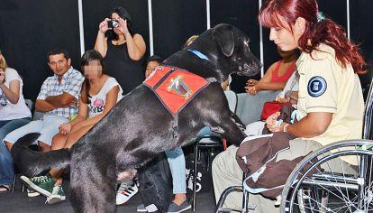 En acción. La entrenadora Sofía García demuestra cómo trabajan los canes.