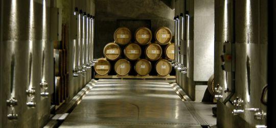 Tu caja DELIRIO con los mejores vinos de Pulenta