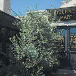 gourmet-marti1