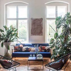 Las plantas colocadas en el interior ayudan a aliviar el estrés
