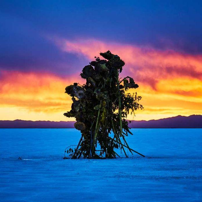 Resultado de imagen para BIENALSUR 2019 inaugura en Tierra del Fuego