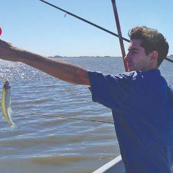 Otro de los más chiquitos, pescado con anzuelo Nº 1.
